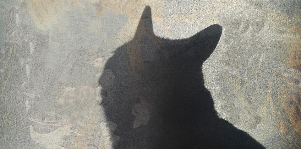 Kat I